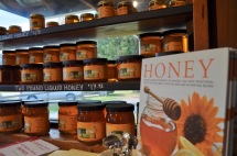 Fresh honey at Cold Hollow Cider Mill