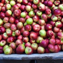 Fresh apples at Cold Hollow Cider Mill